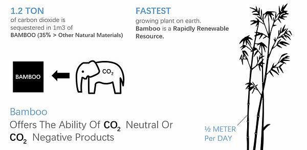 ReNuTeq - Sustainability - Carbon Positi