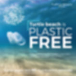 plasticfree-02.jpg