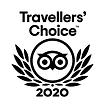 2020 TA.png