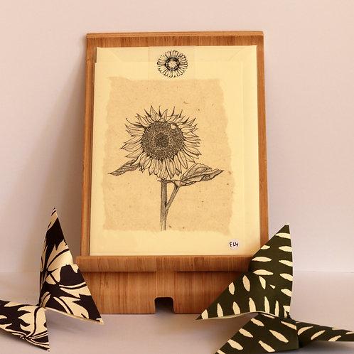 Black & White Sunflower Greetings Card