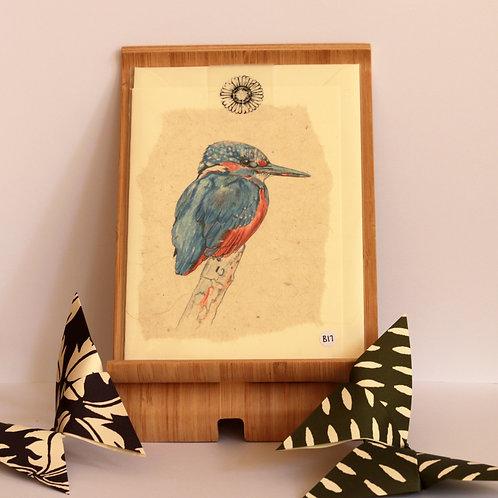 Kingfisher Greetings Card