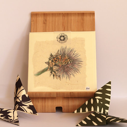 Thistle & Painted lady Butterfly greetings Card.