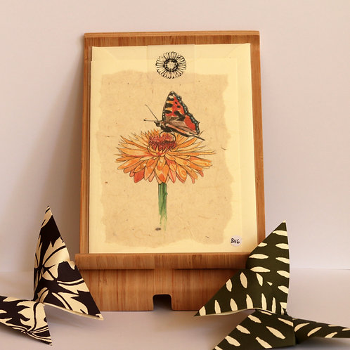 Daisy & Tortoiseshell Butterfly Greetings Card