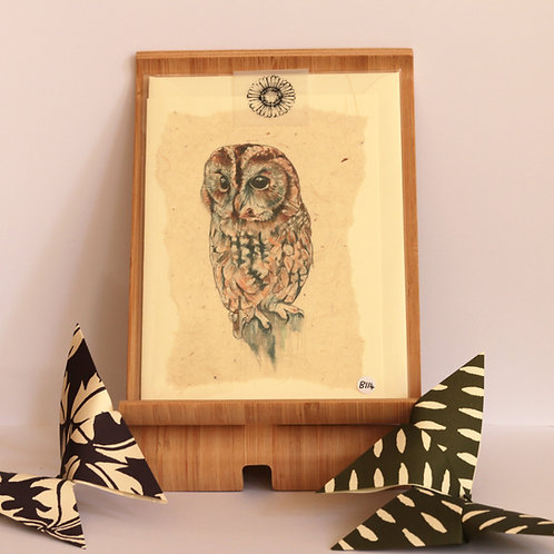 Tawny Owl Greetings Card