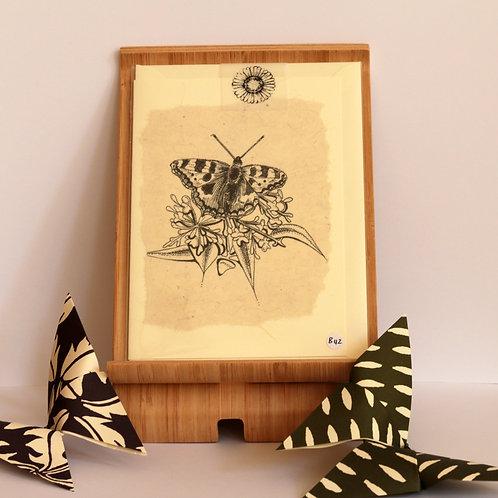 Black & White Tortoiseshell Butterfly Greetings Card.