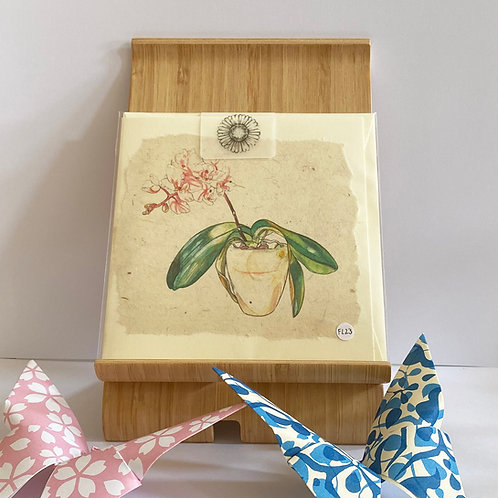 Small Potted Orchid Greetings Card