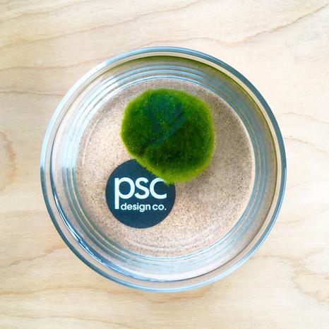 PSCdesignco logo marimo.jpg