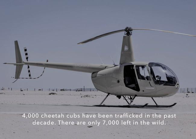 Helicopter wildlife rescue.jpg