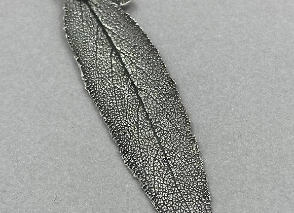 Slender Sage Leaf
