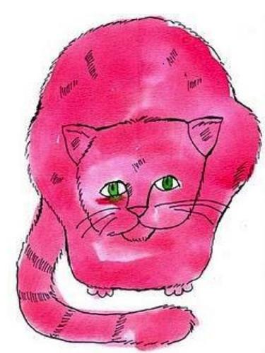 Warhol Cat.JPG