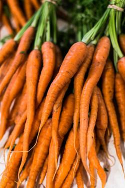 Timber Hill Farm - Fresh Carrots