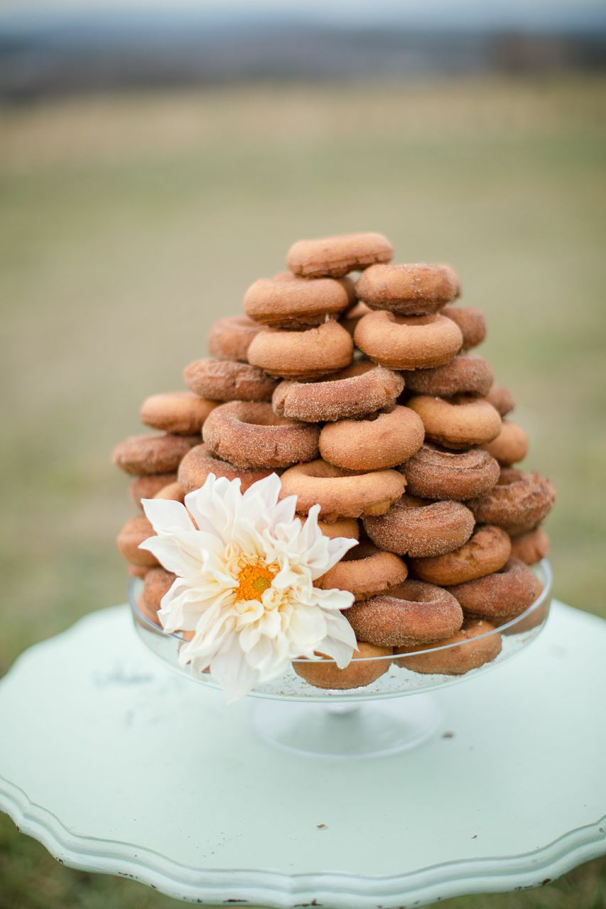 Timber Hill Farm - Cider Donut Cake