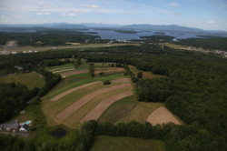 Timber Hill Farm Aerial