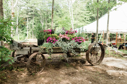 Christian Napolitano - Venue Wagon