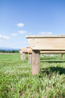 Farm Benches for Ceremony