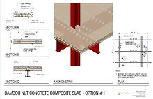 Bamboo NLT Concrete Composite Slab Optio