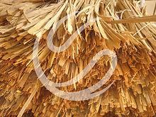 BambooFiber+logomark.jpg