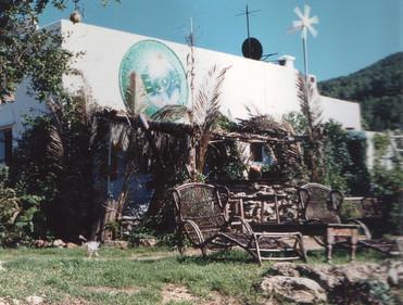 1996 d-1.jpg