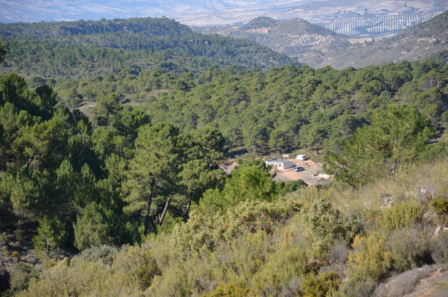 View of Casita Verde from the hillside