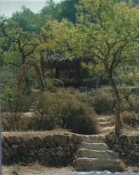 2000 c-1.jpg
