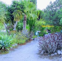 The entrance to Casita Verde