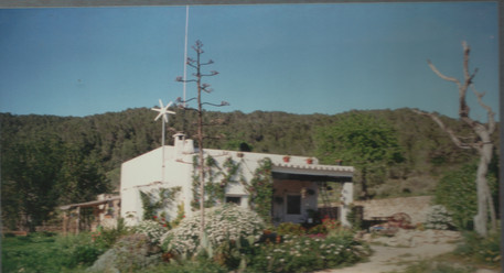 1994 - view of the farm