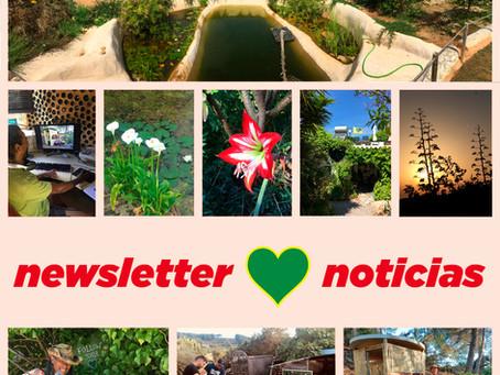 Noticias Corazón Verde - Verano de 2021