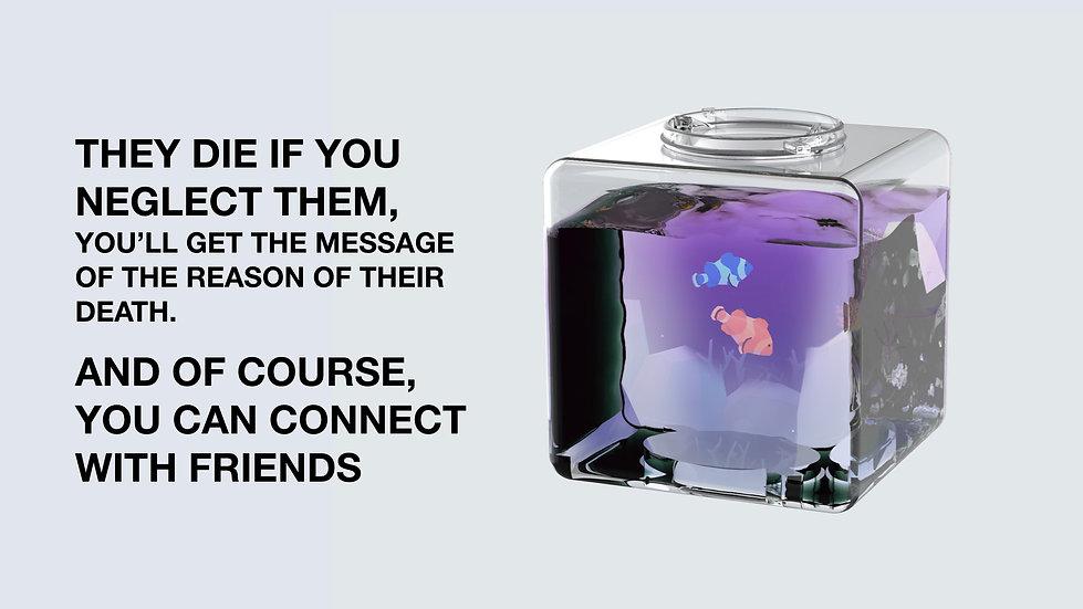 Affirming Artifacts- SpaceFish.com -Feli