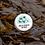 Thumbnail: Rose and Seaweed Lip Balm 15ml - The Coconut Bee