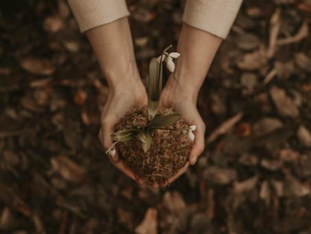 Gestione più sostenibile dei residui organici: svolta green degli agriturismi Coldiretti