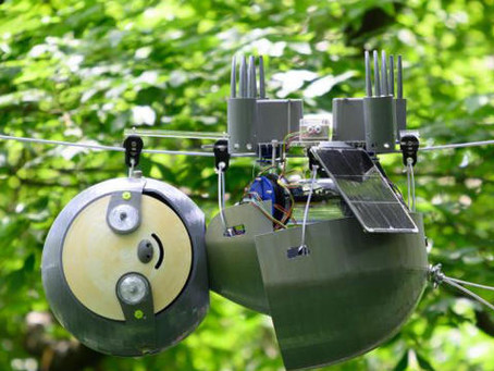 SlothBot: il bradipo robot che protegge le specie a rischio del Pianeta