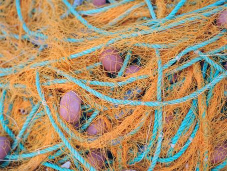 Reti e strumenti per la pesca invadono le coste del Gargano: la denuncia di Greenpeace