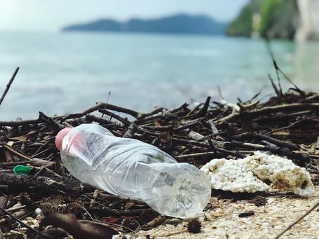 Salute e inquinamento: quanta microplastica ingeriamo?