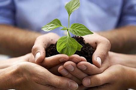 Le etichette ambientali per un consumo più sostenibile