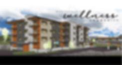 THETOM_websitetileAUG6 smaller.jpg