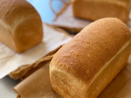 9月スタート!パン作りを学ぶクラス開催!滋賀草津パン教室