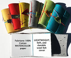 FF new colors 1000 web__edited-1.jpg