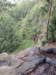 Queensland (john evans)