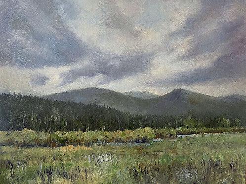 Grey Day on Lolo Creek