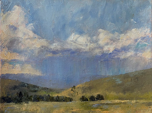 Showers in the Valley (SOLD)