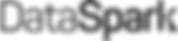 DSv3_DataSpark_OffBlack.png