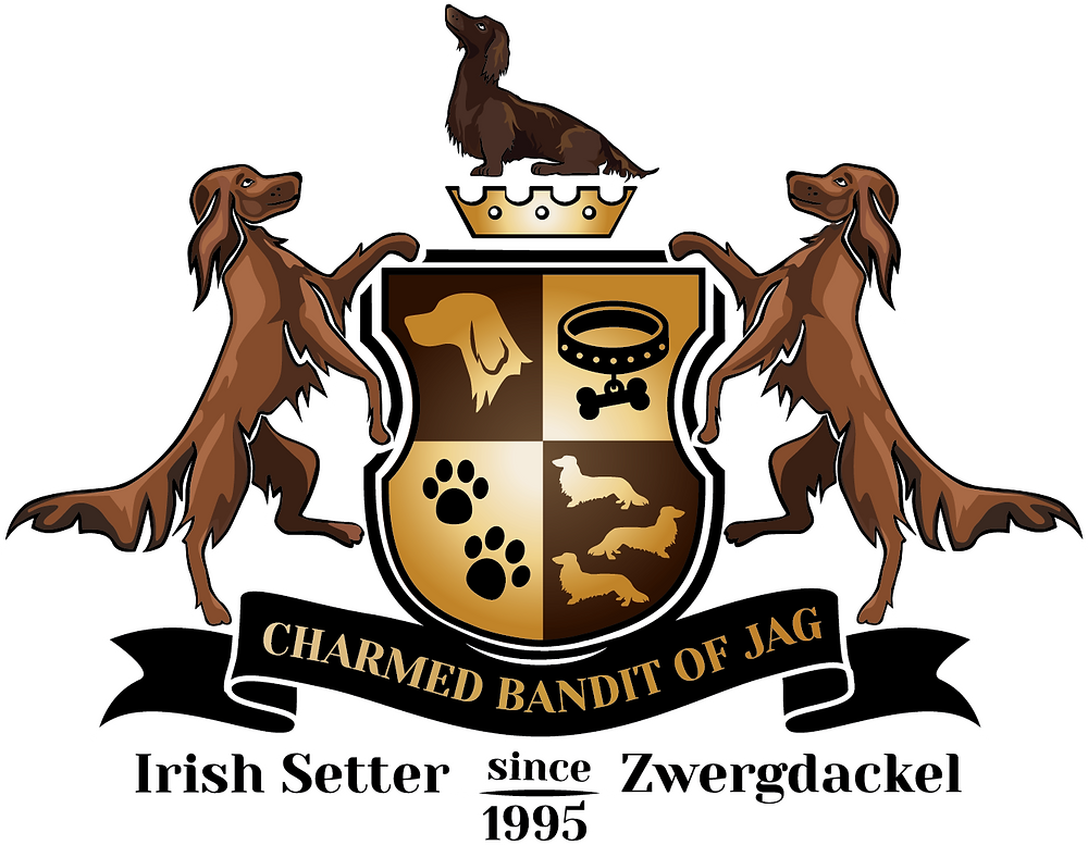 Charmed bandits of JAG Logo