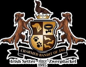 Charmed bandits of JAG Logo