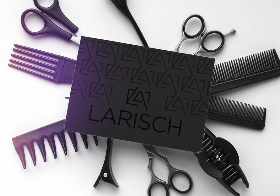 Larisch%20Introbild_edited.png