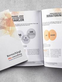Bornschlegl ebo-consulting