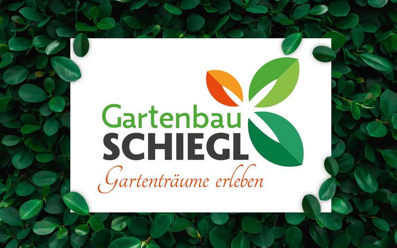 Schiegl-Intro2.jpg