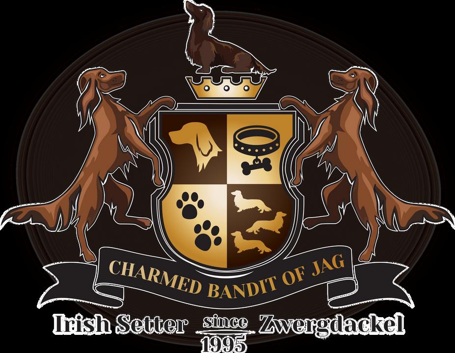 Charmed Bandits of J.A.G. Hundezucht Logo Irish Setter, Dackel, Zwergdackel Formzucht,