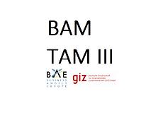 BAM TAMM III Logo 2.png