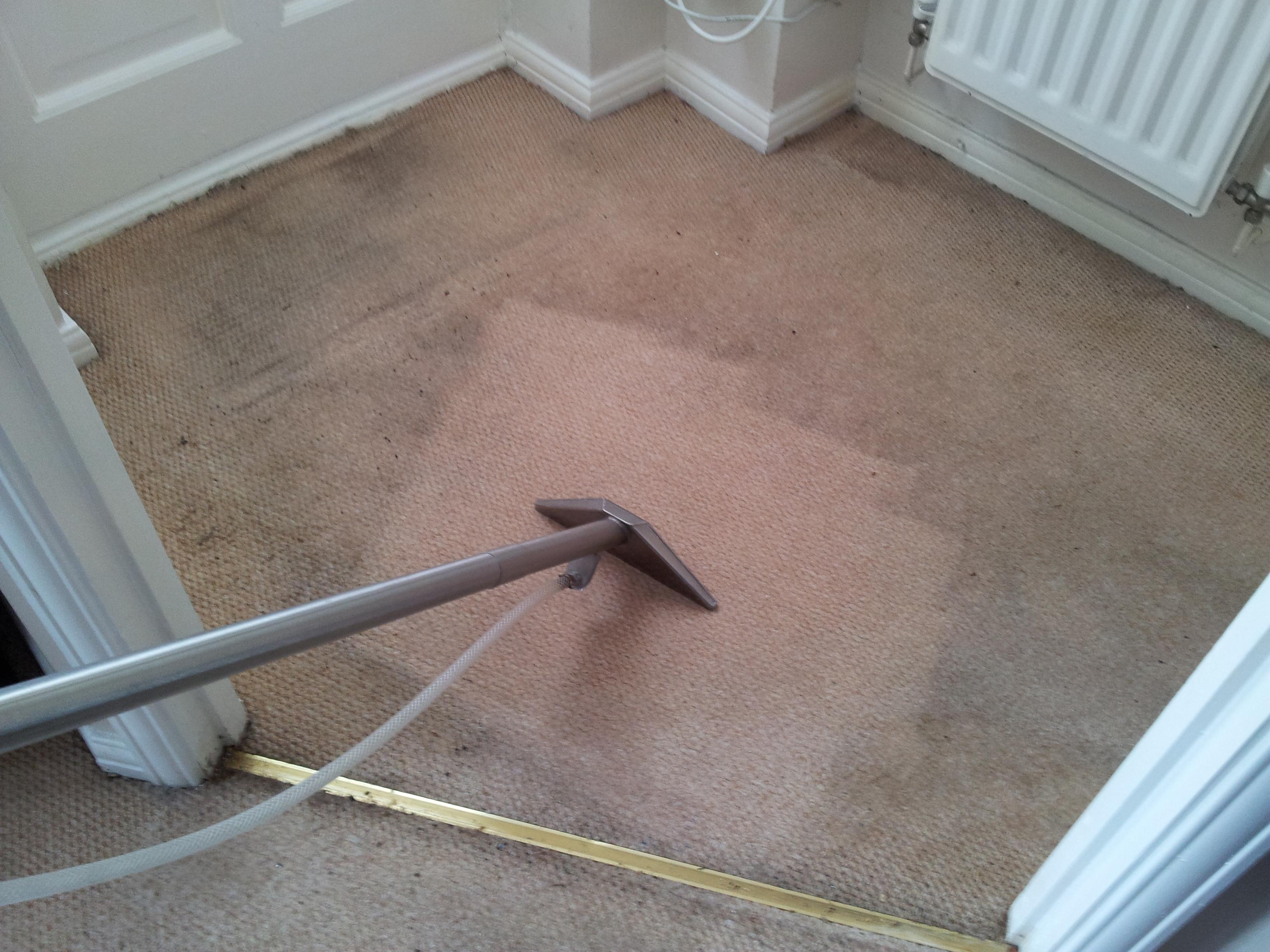 A once cream carpet