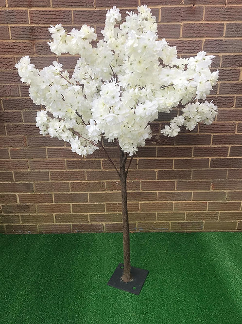Hire 4ft Blossom Trees - Table centres